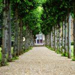 In bloom: spring gardens and parks you'll love in London